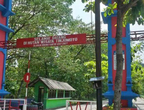 Jelajahi Hutan Wisata Tinjomoyo, Wisata Alam di Pusat Kota Semarang