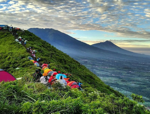 Menjelajahi Alam dengan Camping di Gunung Andong