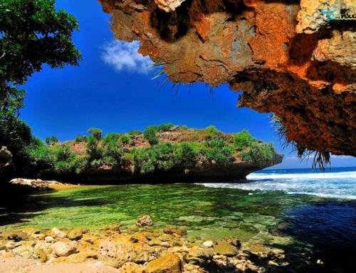 Pantai Dadap Ayam, Wisata Ekstotis Tersembunyi di Gunungkidul